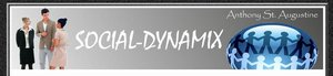 Social Dynamix website